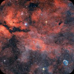 IC1318 RGB