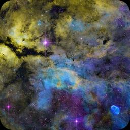 IC1318 SHO