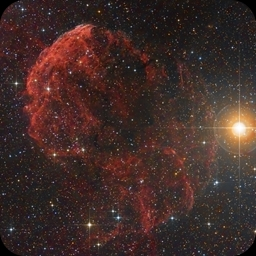 IC443