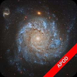 NGC1309